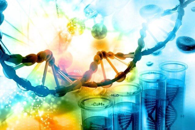 راهنمایی شرکت های زیست فناوری به سمت فراوری گل های زینتی!، شورای ایمنی زیستی تکلیف را روشن کند
