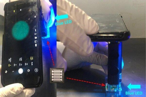 یک ویروس خطرناک آبزی با موبایل تشخیص داده می گردد