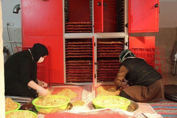 تولیدات مددجویان قزوین به چهار کشور اروپایی صادر می گردد