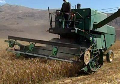 کاهش صادرات محصولات کشاورزی به دلیل نبود زیرساخت های مناسب