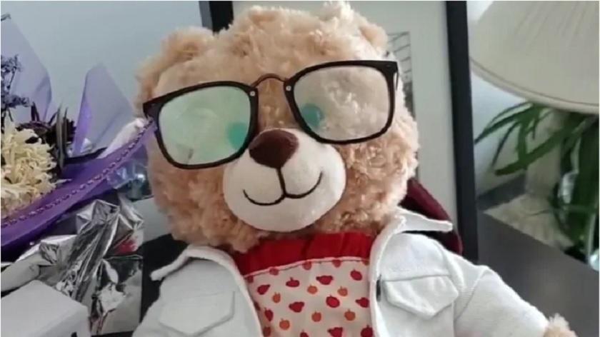 مژدگانی 5 هزار دلاری هنرپیشه مشهور کانادایی برای برگرداندن عروسک خرسی با آخرین جملات مادر سرطانی ونکووری