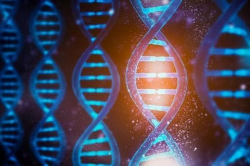 هوش مصنوعی تحلیل ژنتیک را دقیق تر و سریع تر می کند